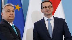 Będzie powiązanie funduszy UE z ,,praworządnością''. Weto Polski i Węgier? - miniaturka