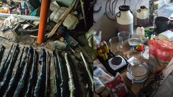 Cela Plus: CBŚP zlikwidowało dwa magazyny nielegalnej broni i laboratorium metamfetaminy - miniaturka