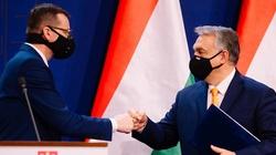 Wczorajsza deklaracja pokazała, że Polska i Węgry nie blefują - miniaturka