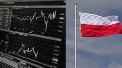 Brawo Polska! Luka w VAT: spodziewanie optymistyczne dane KE - miniaturka