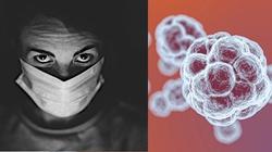 Grozi nam nowa pandemia rodem z Chin?! Agresywny wirus atakuje świnie, zagraża też ludziom! - miniaturka
