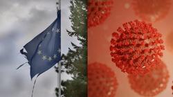 Pandemia, kryzys, a UE brnie w wojny ideologiczne... - miniaturka