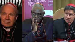 Sześciu ,,papabile''. Kto zastąpi papieża Franciszka? - miniaturka