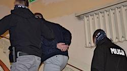 Zatrzymano mężczyznę proponującego seks 14-latce. Nieoficjalnie: To gwiazdor disco polo - miniaturka