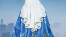 Matka Boża zawsze wkracza w sytuacje największych kryzysów! Musimy teraz wybrać opcję Maryi! - miniaturka