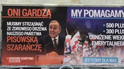 Dość dzielenia i straszenia Polaków! Świetna akcja PiS - miniaturka