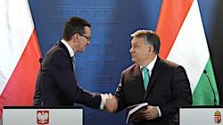 Orban: Głównym interesem Węgier są połączenia z Polską - miniaturka
