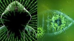 Hakerzy wykorzystują pandemię. Zmasowane ataki - miniaturka