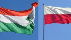 Węgrzy uczcili rocznicę chrztu Polski. Piękny gest! - miniaturka