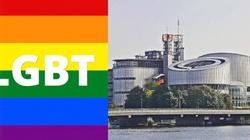 Ordo Iuris: Wyrok Trybunału w Strasburgu zgodny z żądaniami LGBT - miniaturka