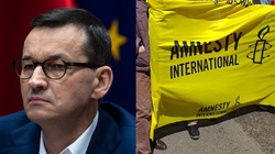 Zideologizowana Amnesty International. MOCNY wpis Morawieckiego - miniaturka