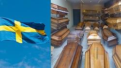 Rośnie bunt Szwedów: Zatrzymać ludobójstwo - miniaturka