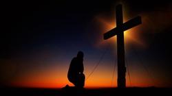 Postępujcie drogą miłości, bo Chrystus was umiłował!   - miniaturka