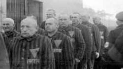 Człowiek za drutami, czyli jak wyglądało życie kapłana w obozie Dachau. Wstrząsające! - miniaturka