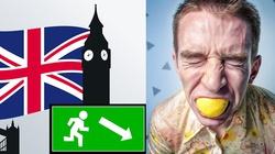 Krysiak: Wielka Brytania dawno temu oszalała. Tam są procesy za … żart o psie, misdżenderyzowanie … - miniaturka