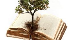 """Co to znaczy """"trwać w Chrystusie""""? - miniaturka"""
