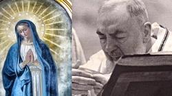 Z Maryją i Ojcem Pio CZYŚCIMY CZYŚCIEC - miniaturka