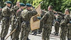 Wojska Obrony Terytorialnej mają dziś swoje święto - miniaturka