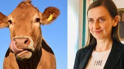 Mówi pani, że krowy są gwałcone, by dawały mleko... - miniaturka