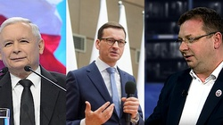 Cela Plus: Mienie mafii narkotykowej na 1,5 mld zł zabezpieczono w Polsce PiS - miniaturka