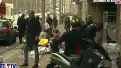Mądry Polak przed szkodą! Wnioski z zamachów dla Polski - miniaturka