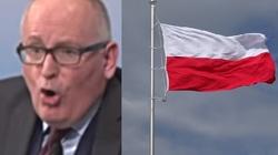Mocne! Europoseł Wiśniewska ujawnia, co przeszkadza eurolewactwu w Polsce - miniaturka