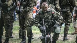 Polska i Litwa połączyły siły obrony terytorialnej - miniaturka
