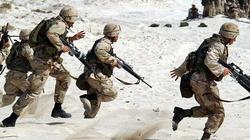 Teluk: Polska armia będzie bronić Łotwy - miniaturka