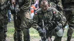 PO sabotuje powstanie Obrony Terytorialnej - miniaturka