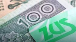 Minister finansów potwierdza: Koniec ryczałtowego ZUS-u dla małych firm - miniaturka