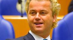 Bojkot holenderskich towarów w Polsce? - miniaturka