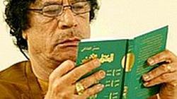 Libijscy powstańcy pojmali synów Kadafiego - miniaturka