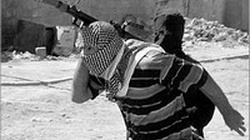 Al-Kaida wraca do Afganistanu? - miniaturka
