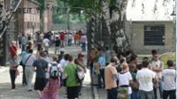 Izraelski kontroler przypomina: To nie Polacy dokonali holokaustu - miniaturka