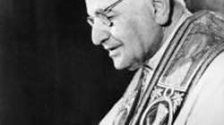 Mocna książka o Janie XXIII - miniaturka