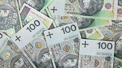 Jurek i Ziobro razem przeciw euro - miniaturka