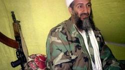 Bin Laden ukrywając się spłodził czworo dzieci - miniaturka